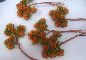Бонсайчик «Оранжевое чудо»